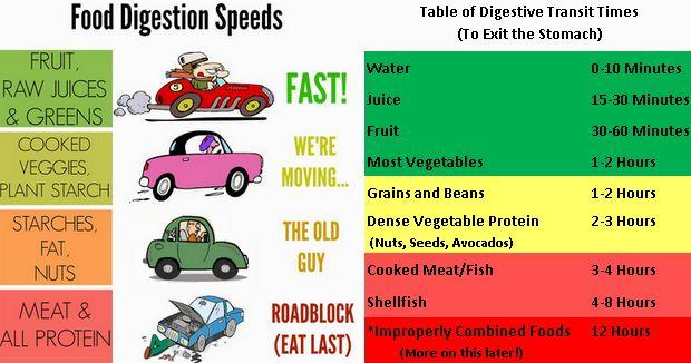 digestion_times.jpg - 45.99 kB